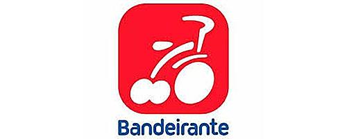 BRINQUEDOS BANDEIRANTE